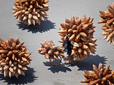 รวมสุดยอดภาพถ่าย ที่ดีที่สุดแห่งปี! จาก National Geographic [ภาพเยอะ] | Tieweng