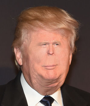Tiny Face Trump