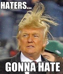 Donald-Trump-Donald-Trump-Haters-Gonna-Hate-Picture.jpg (550×646)