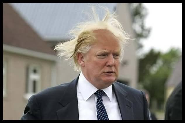 Donald-Trump-Funny-Hair-Style-Picture.jpg (633×420)