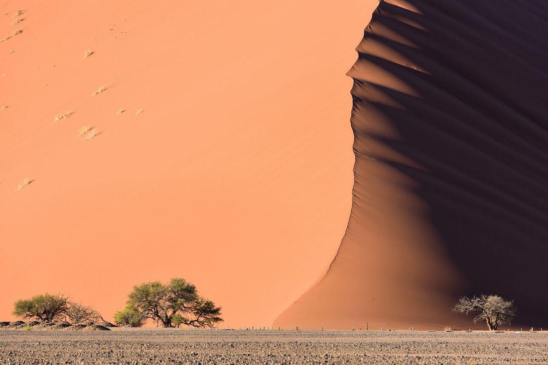 Namib Desert Sea by Nick Lefebvre - Photo 113690069 / 500px