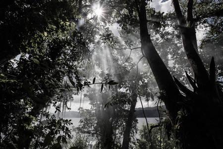 ENTRE LOS OJOS – Mantovani Andréa Photography