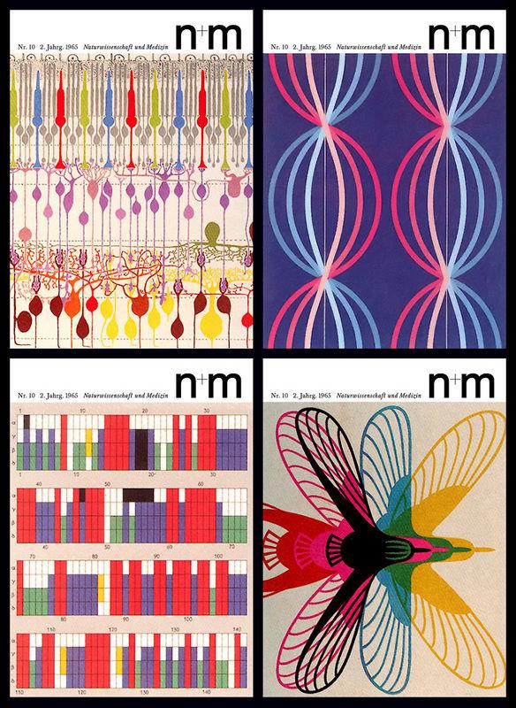 nm_02-1.jpg 584×800 pixels
