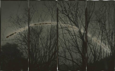 Sunburn: Long Exposure Photographs With Markings Burned by the Light of the Sun  Colossal