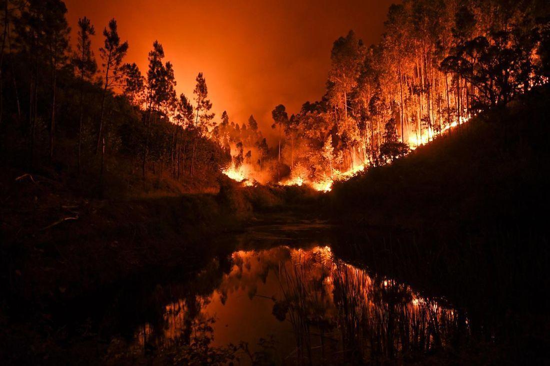 Portugal forest fire - The Boston Globe
