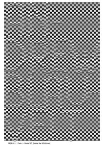 Blauvelt_Poster.jpg 500×705 pixels