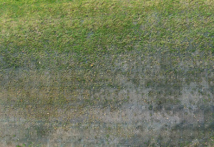 o_gellefer_1.jpg 722×499 pixels