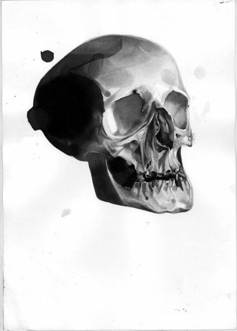 Flickr Photo Download: Skull 01